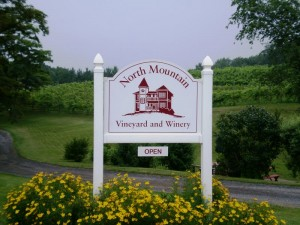 North Mountain Vineyard